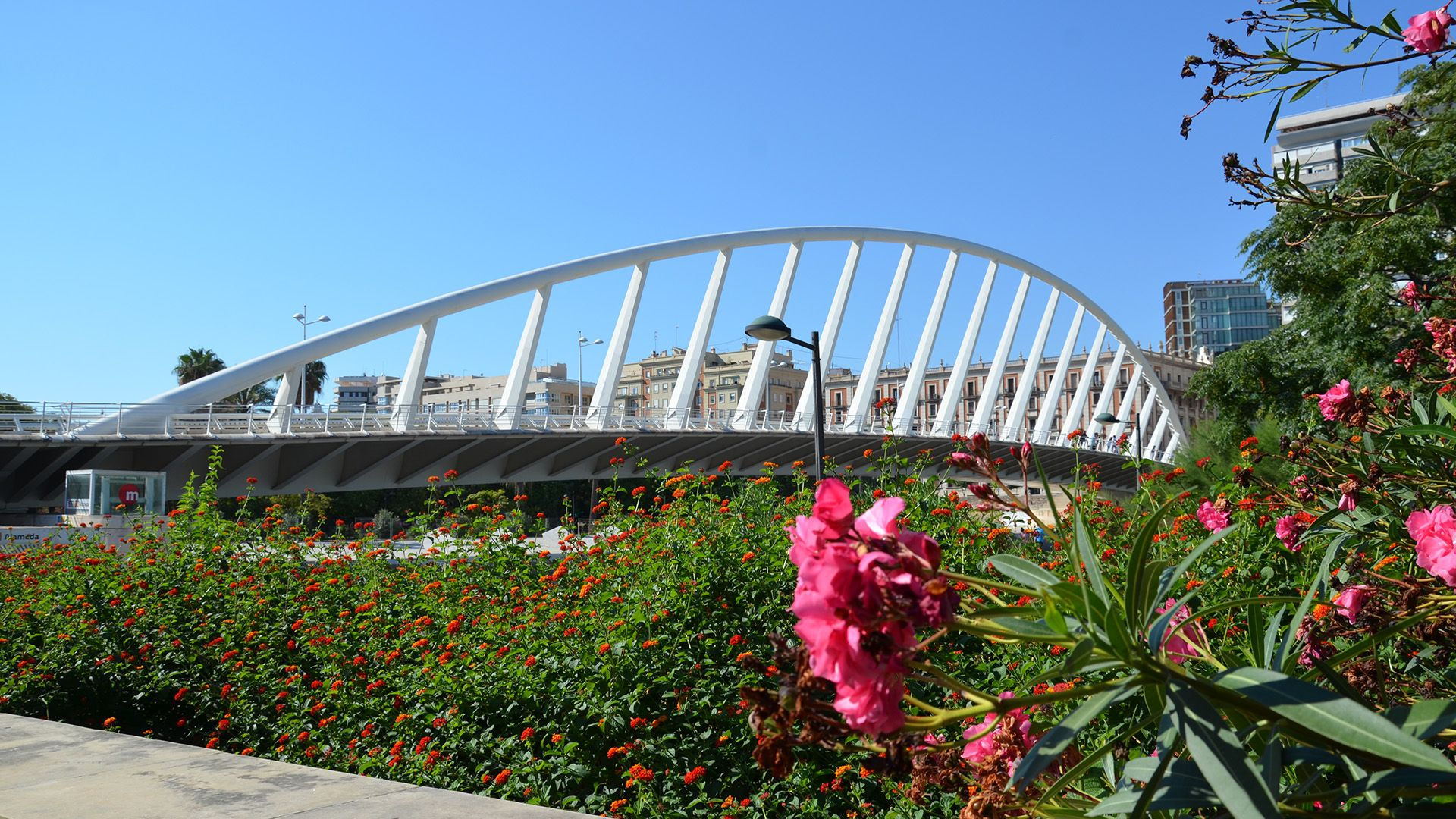 Guided Tour Valencia Gardens and Bridges of the River Turia