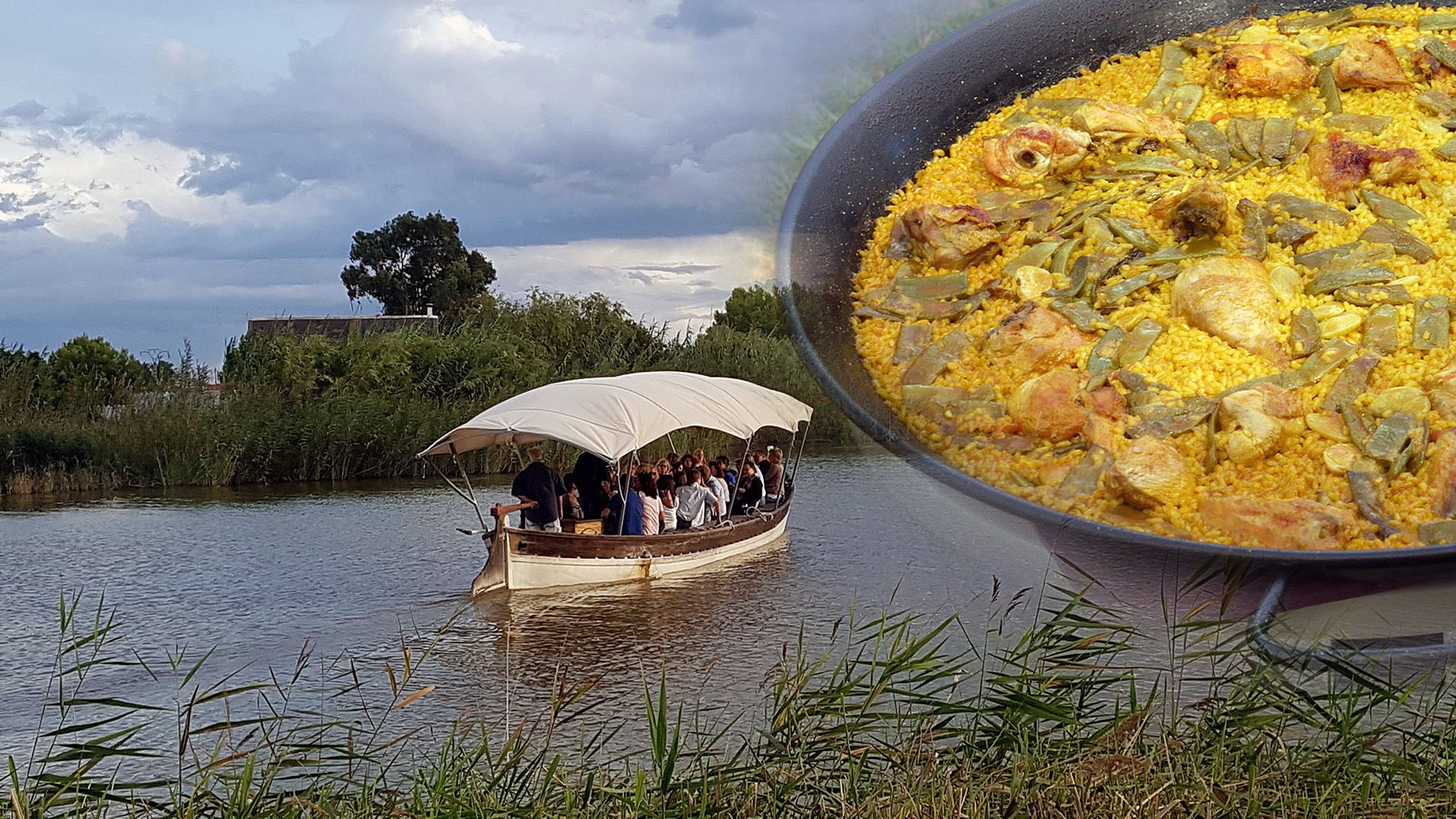 Guided Tour Albufera and Paella
