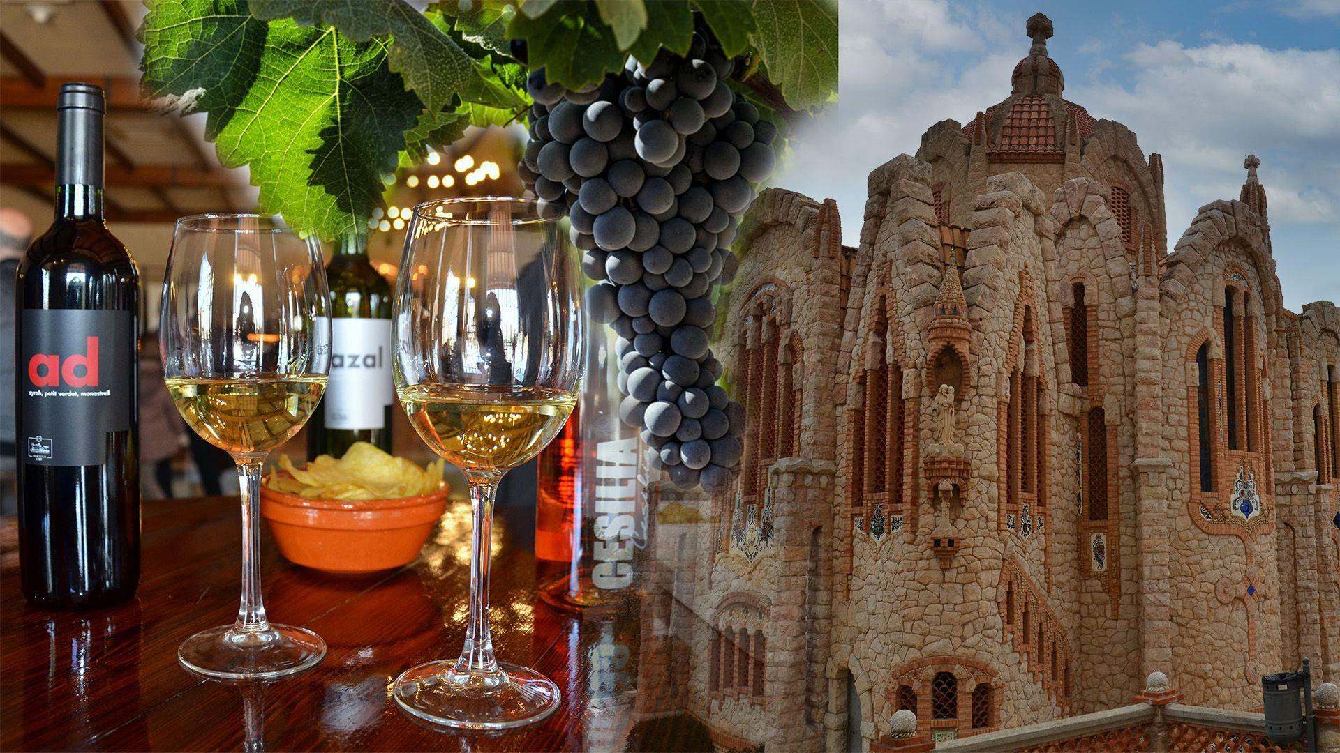 Guided Tour Alicante - Novelda wine and culture