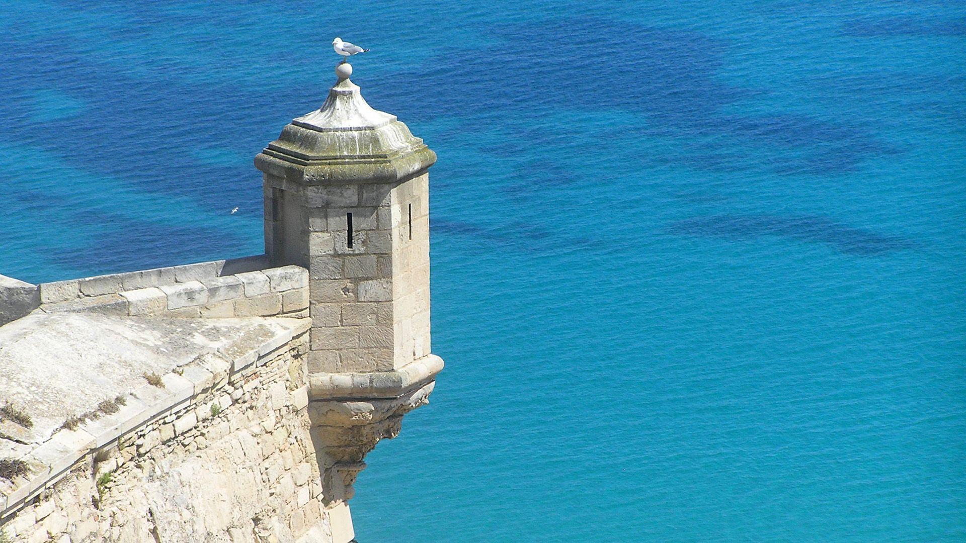 Alicante - visitas guiadas y actividades para cruceros