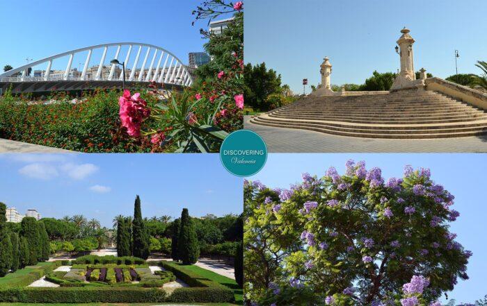 New daily guided tour Valencia - river Turia gardens and bridges