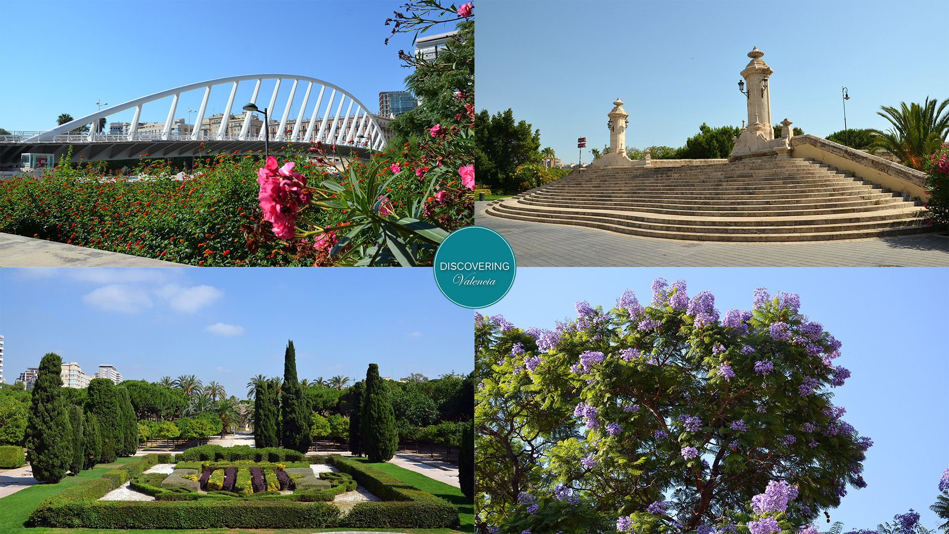 New daily guided tour Valencia - river Turia gardens and bridges