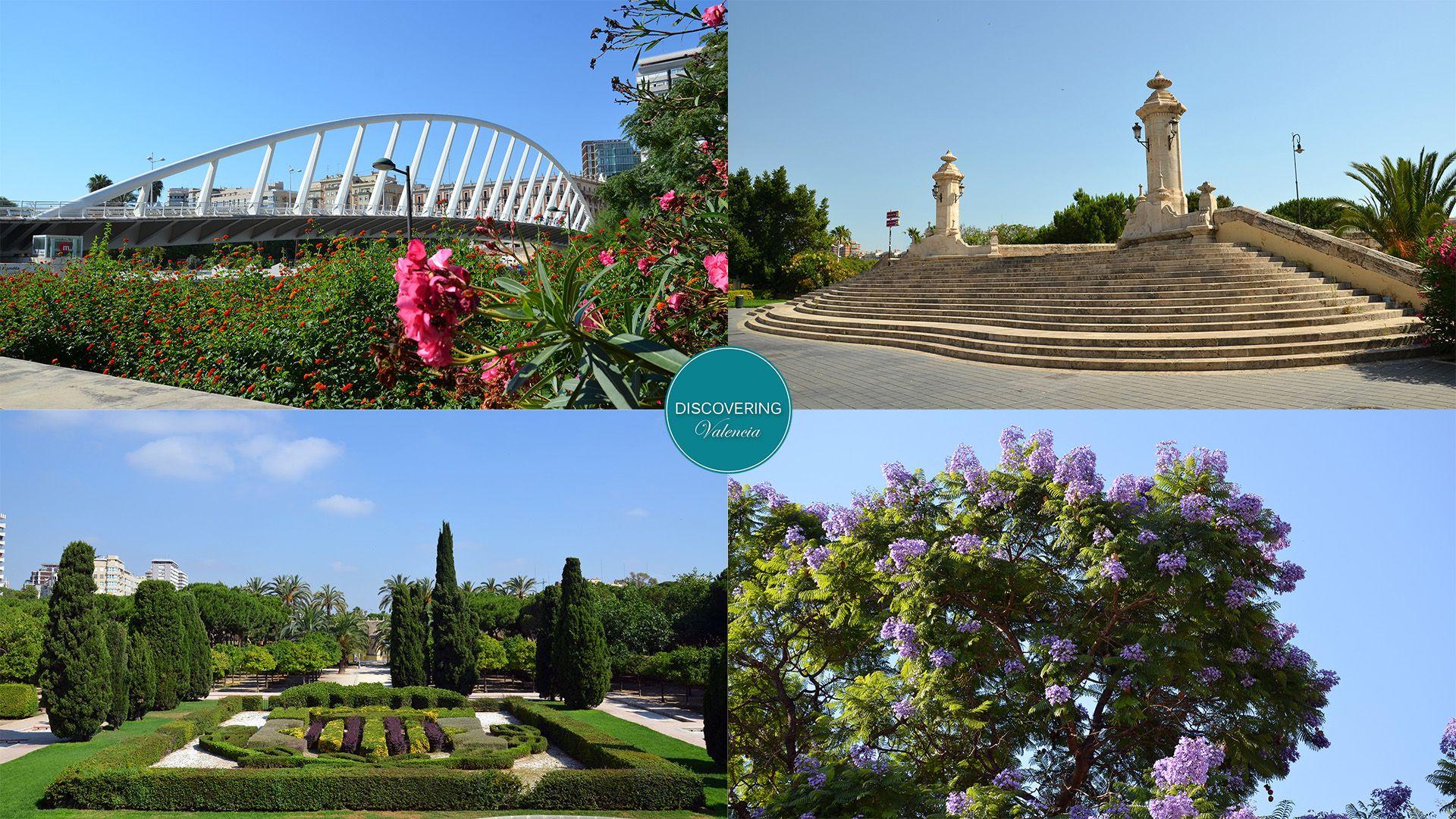 Nueva visita guiada diaria Valencia - jardines y puentes del río Turia
